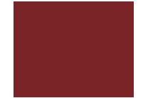 chezleon-logo